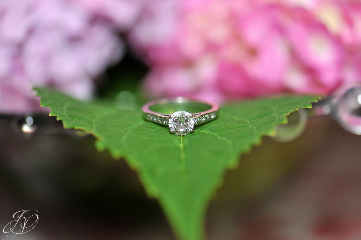 Mohawk River Country Club & Chateau, Saratoga Wedding Photographer, wedding ring, wedding details photo