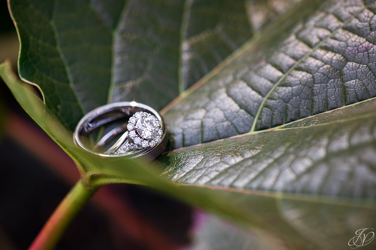 unique photo of wedding rings in flowers