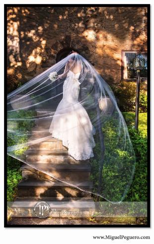 50 Must-Have Wedding Photos