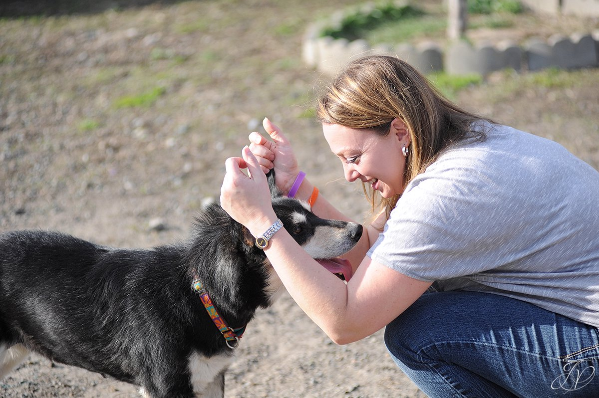 photo of dog happy and playing with rescuer