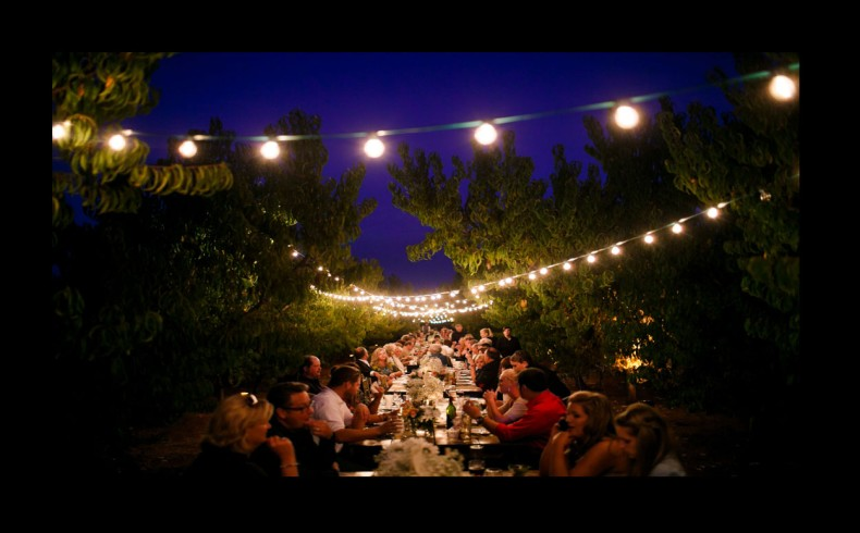 String Lights For Events : Isom s Orchard Event Featuring Metropolitan s Bistro Cafe String Lights - Athens, Alabama - www ...