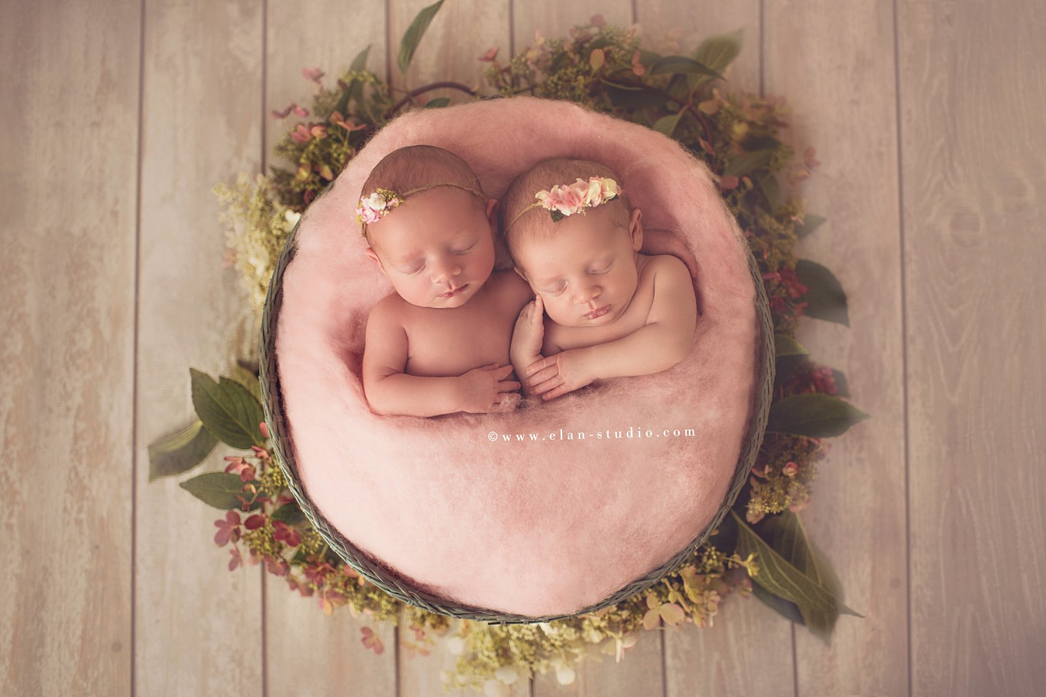 newborn twin girls in basket with florals and greenery