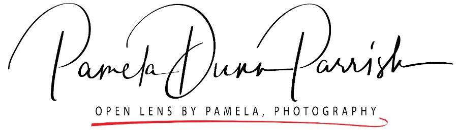 Open Lens by Pamela, LLC